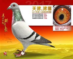 津福决赛292