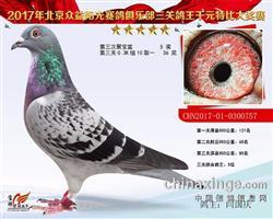 三关综合鸽王5名0300757
