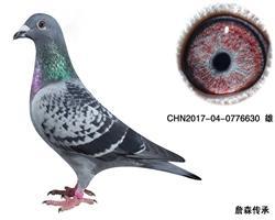CHN2017-04-0776630