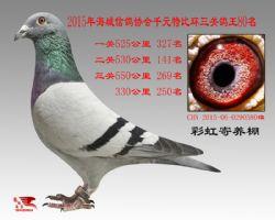 IMG_5681_副本