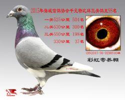 IMG_5700_副本
