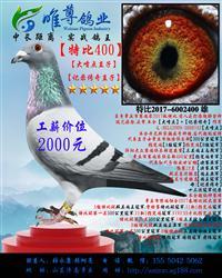 【直子400】展售中