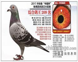 北京开创者挑战赛16名-四关鸽王209名