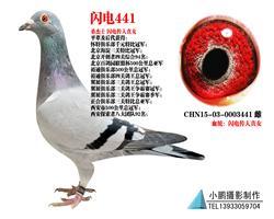 桑杰士 �W��魅酥迸�441