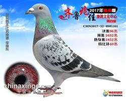 李振东201