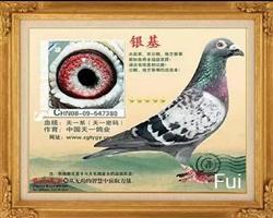2008-09-547380上海天一鸽业