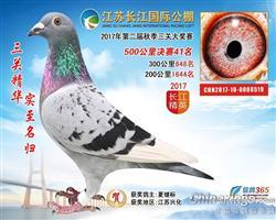 江苏长江国际决赛41
