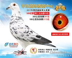 华东国际决赛18名