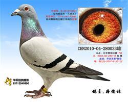 """""""惠翔924"""""""