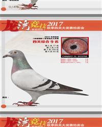 0172793(四关综合9名)