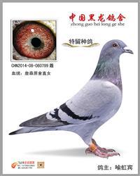 CHN2014-08-060799