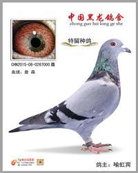 CHN2015-08-0267000