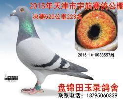 2015100038557副本_副本 - 副本