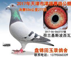 2017060663737副本_副本