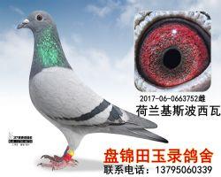 2017060663752副本_副本