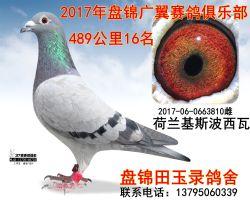 2017060663810副本_副本