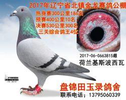 2017060663815副本_副本