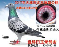 2017060663840副本_副本