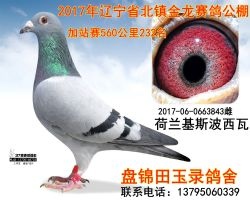 2017060663843副本_副本