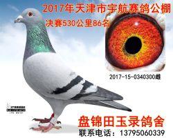 2017150340300副本_副本