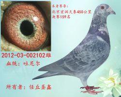 2012-03-002102花