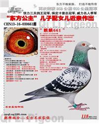 CHN13-16-030661
