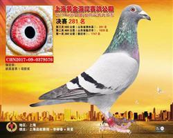 2017上海�S金海岸�Q�281名
