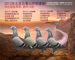 北京石景山开创者杯团体季军