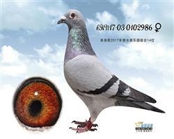 瑞麒986
