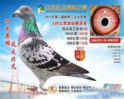 2017年江苏长江国际公棚加站赛亚军