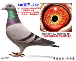 501直子-789