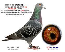 上海市超远程兰州19名