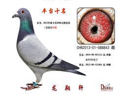 2013年.丰台特比环.三关综合10名.