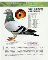 罗宾159