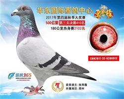 华东公棚决赛410名