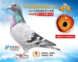 华东公棚决赛145名