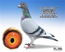 龙鑫780