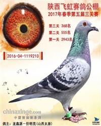 龙鑫210