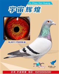 杨欧瓦克483直女18年津福决赛57母亲