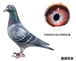 CHN2011-04-039594