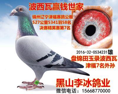 2016320534231副本_副本