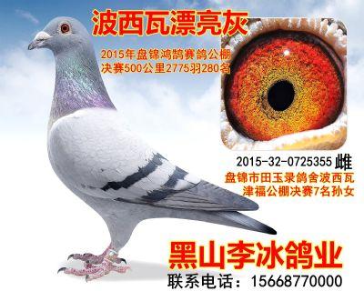 2015320725355副本_副本
