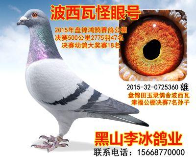 2015320725360副本_副本