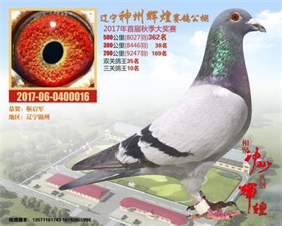 锦州靳启军