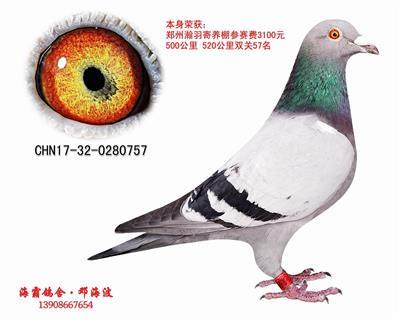 CHN17-32-0280757