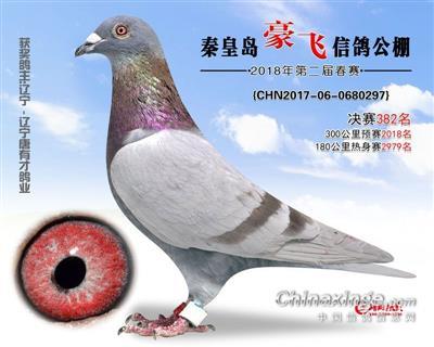 """""""传奇05""""秦皇岛-豪飞决赛382名"""