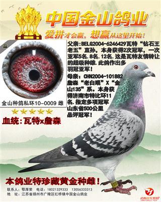 """瓦特""""钻石王老五""""X詹森""""老白眼""""品评冠"""