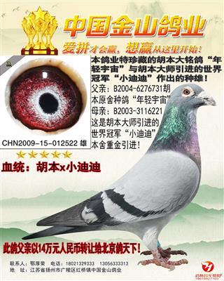 """胡本""""年轻宇宙""""X世界冠军""""小迪迪""""!"""