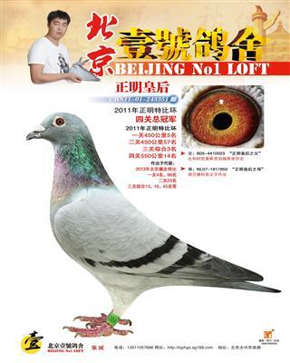 正名四关综合冠军