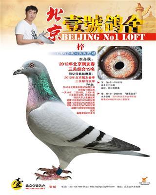 2012年飚友三关综合19名